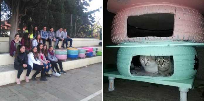 Αποτέλεσμα εικόνας για Μαθητές έφτιαξαν σπιτάκια από λάστιχα αυτοκινήτου για τις αδέσποτες γατούλες στην Λήμνο